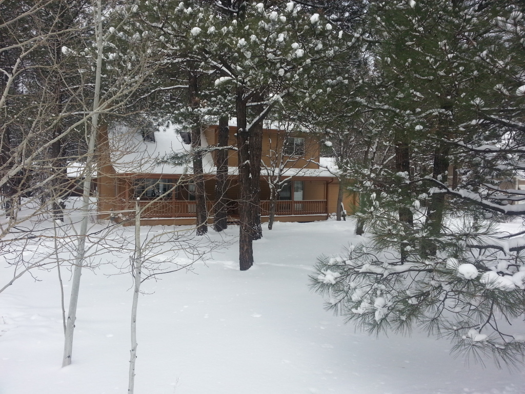 Happy Hideaway Cabin - Pinetop