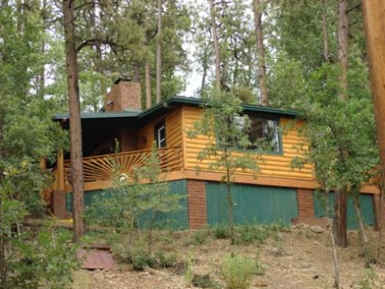 Eagles Nest Cabin Rental - Pinetop