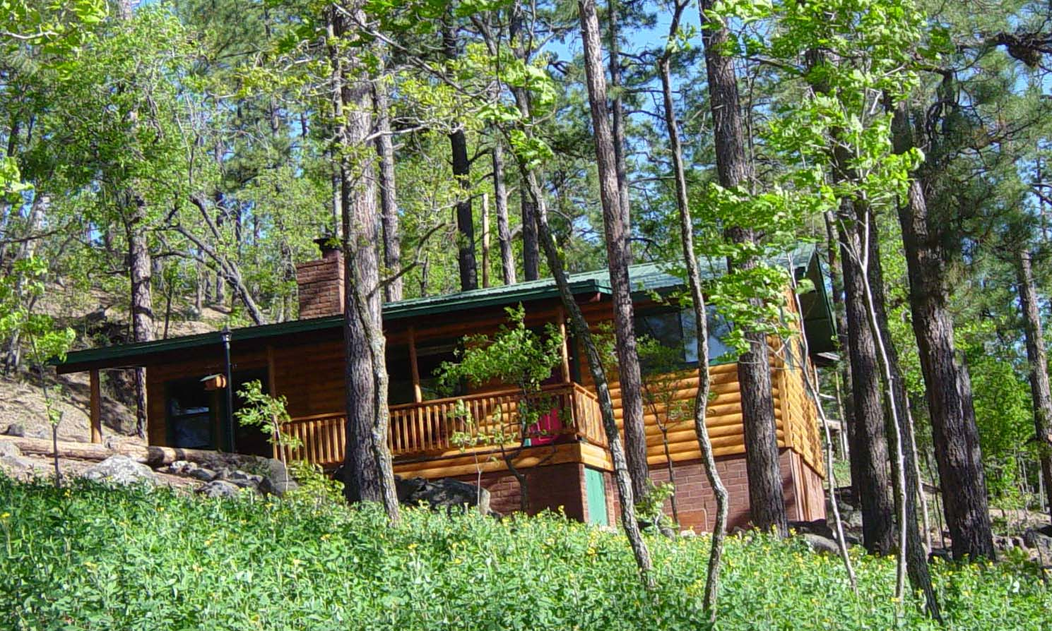 Cabins for sale in pinetop az my marketing journey for Az cabins for sale