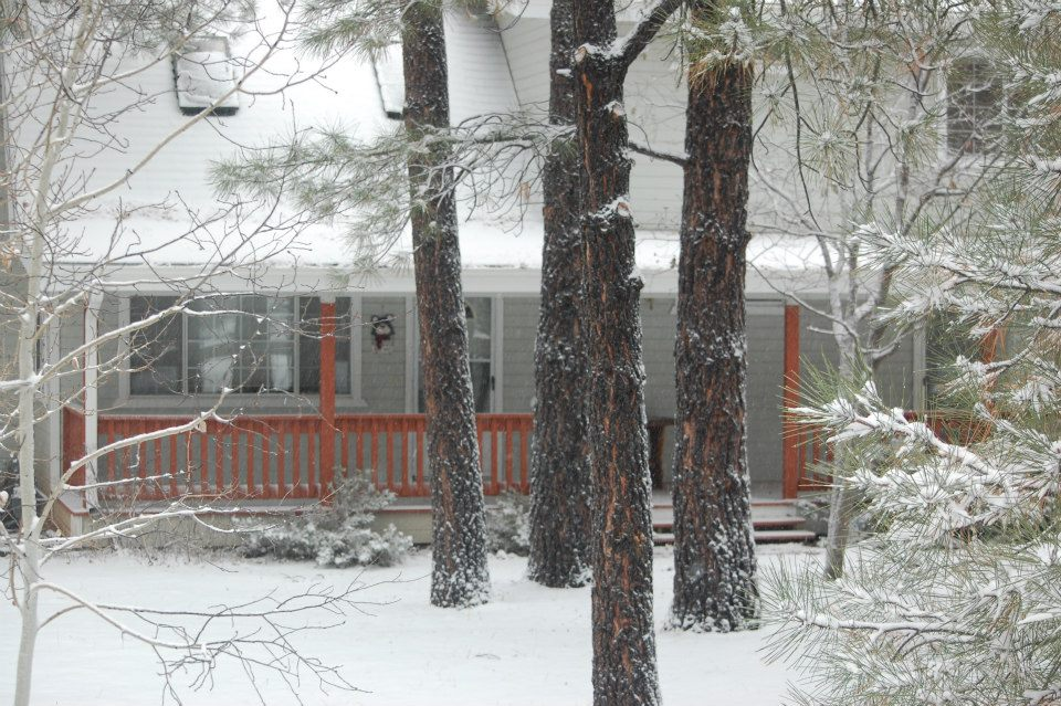 Pinetop Arizona Cabin Rental Vacation