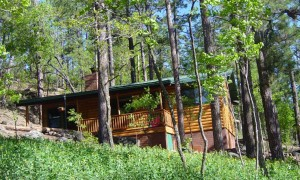 Pinetop Arizona Cabin Rental Vacation White Mountain