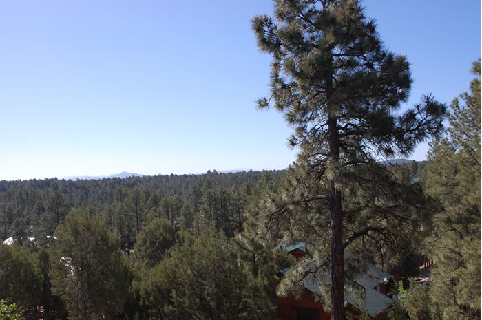 Show Low, Arizona - The Bison Condo Rental