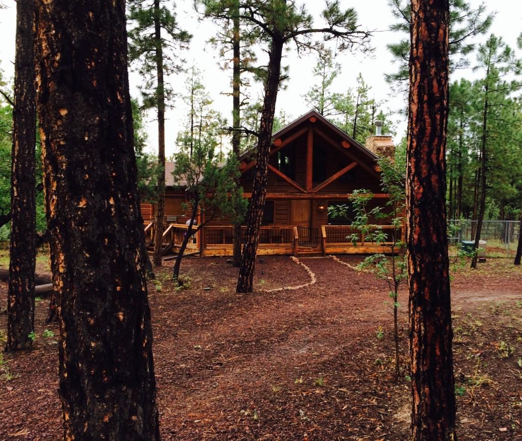 Ziggy's Hideaway Cabin - Pinetop