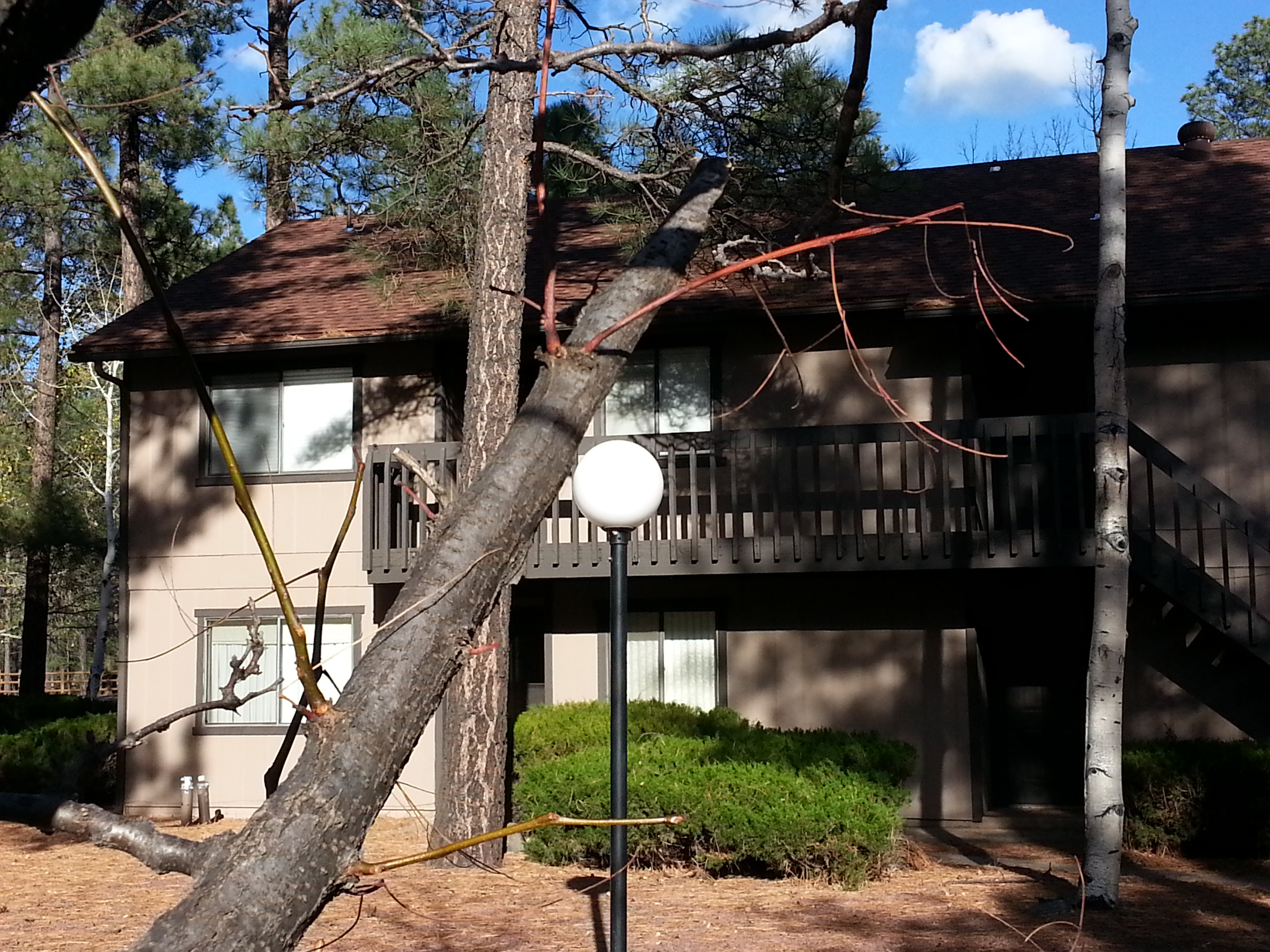 Green's Condo in Pinetop, Arizona