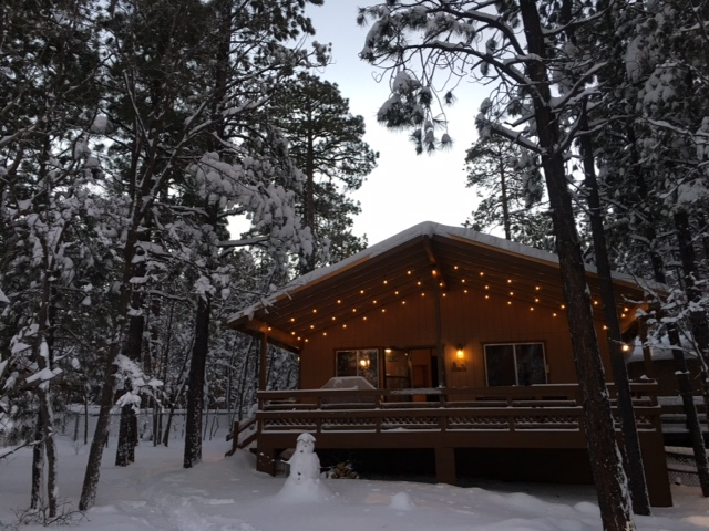 pinetop az cabin rental cabin rental in pinetop arizona 87744